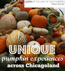 Highwood Pumpkin Fest Hours by Unique Pumpkin Experiences In Chicagoland Queen Of The Land Of