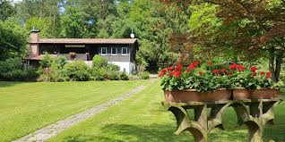 ferienhaus naturliebe ferienhaus mit hund natururlaub