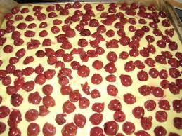 kirsch schmandkuchen vom blech belegt mit creme und kirschen
