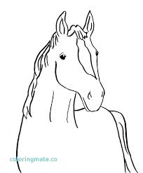 Horse Head Coloring Page Face Best Of